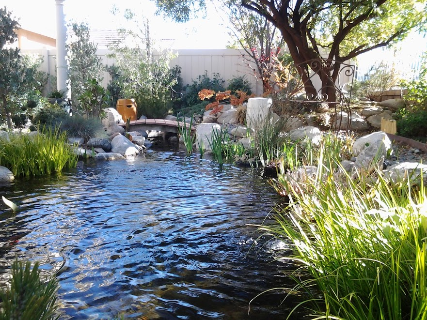 Winter ponds still look great pondman for Koi fish pond care in winter