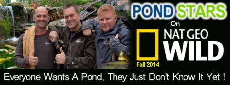 pond star logo