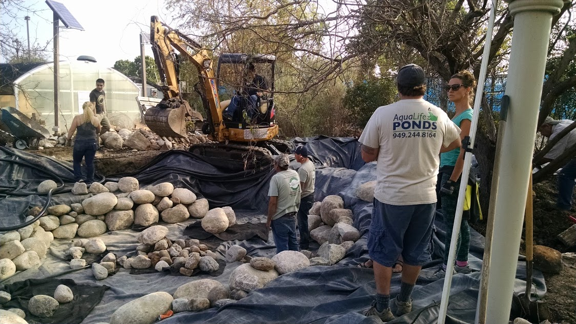 Certified aquascape contractors build a pond at the irvine for Bog filter construction